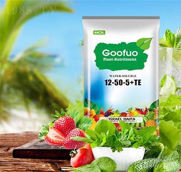 Goofuo水溶肥12-50-5+TE
