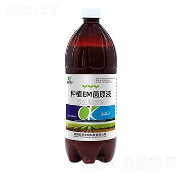 种植EM菌原液-欧克惠农-欧克生物