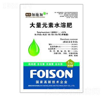 平衡型大量元素水溶肥料19-19-19+TE-阿拉加施加-盛粮生物