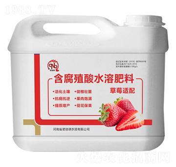 草莓适配含腐殖酸水溶肥料-诺倍琪