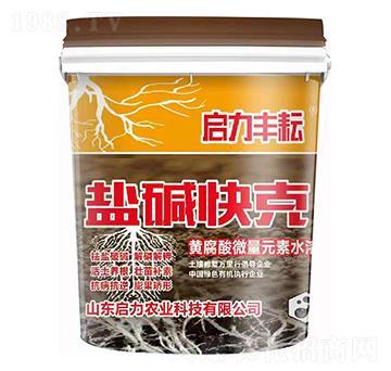 黄腐酸微量元素水溶肥 盐碱快克 启力农业