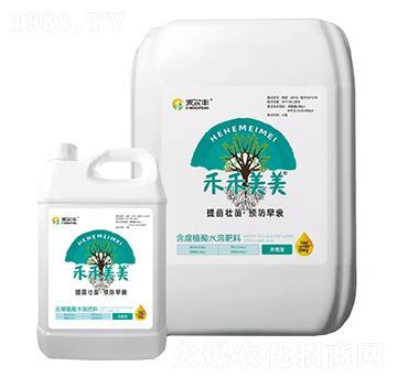 高氮型含腐植酸水溶肥料-禾禾美美-禾尔丰