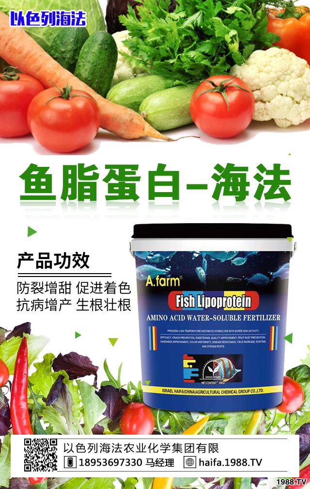 鱼脂蛋白-海法