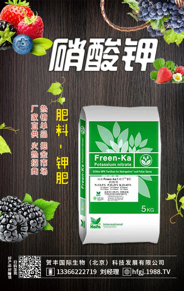 硝酸钾-海法丰瑞卡3号-贺丰国际