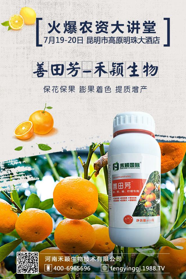 橘、橙、柚、柠檬专用-善田芳-禾颖生物