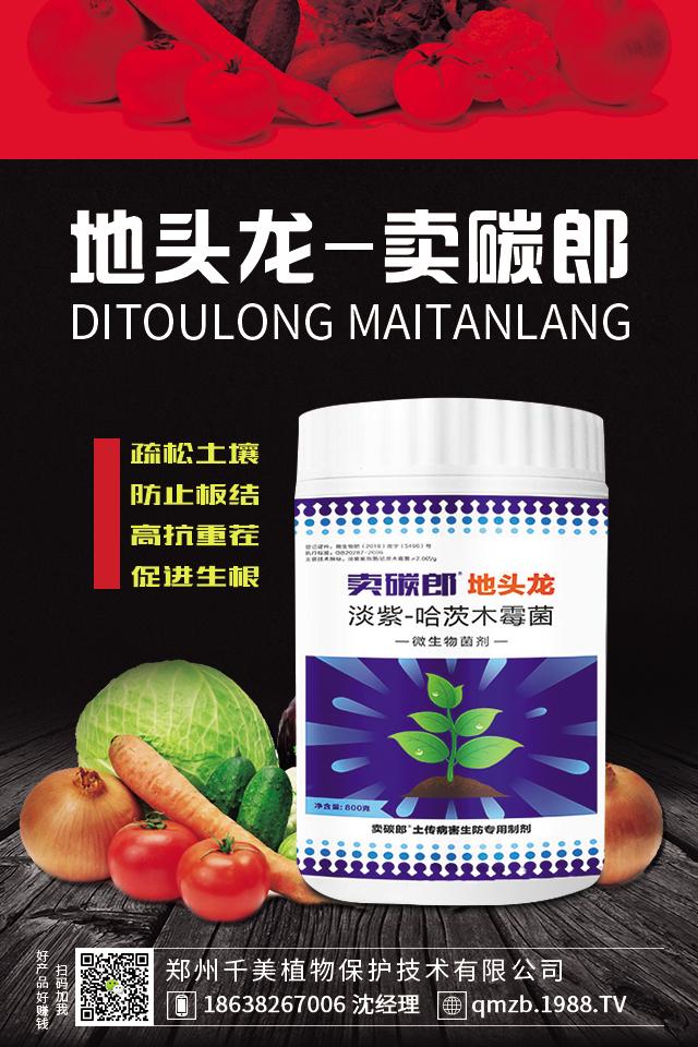 淡紫-哈茨木霉菌-地头龙-卖碳郎-千美植保