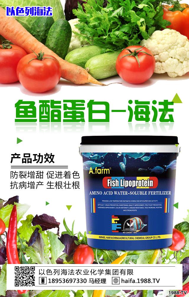 鱼酯蛋白-海法