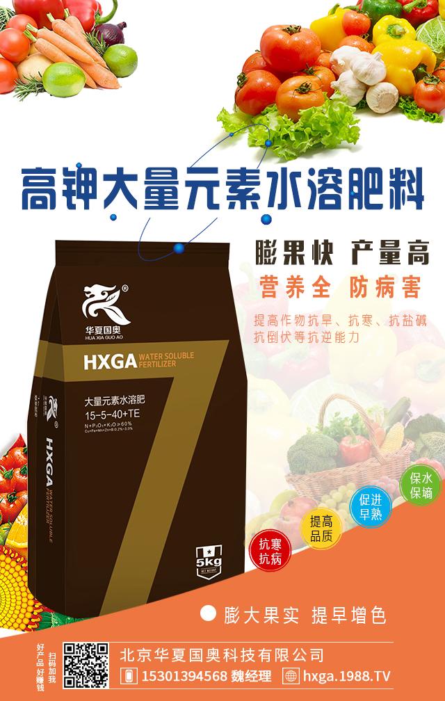 高钾大量元素水溶肥料15-5-40+TE-华夏国奥