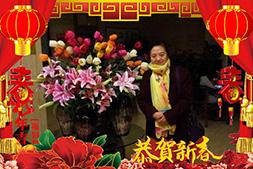 【中台千越】恭祝大家新年新气象,鸡年行大运!