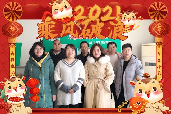 【秦农作物】祝大家2021年新年快乐,牛年大吉,步步高升!