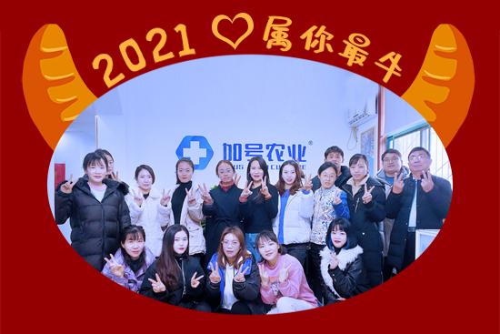 【加号农业】祝大家2021年新年大吉,万事如意!