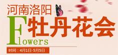 2018洛阳牡丹花会