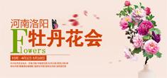 2015洛阳牡丹花会