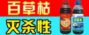 山东联合伟业生物药业有限公司