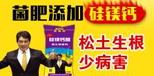 山东爱福地生物科技有限公司
