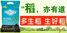 华农(集团)化工股份有限公司