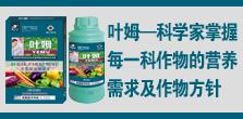 美国蓝洋生物科技有限公司