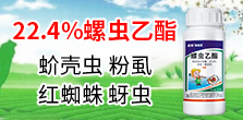 河南勇冠乔迪农业科技有限公司