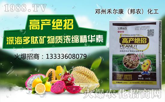 玉米超级棒:添加授粉精,增产更轻松!