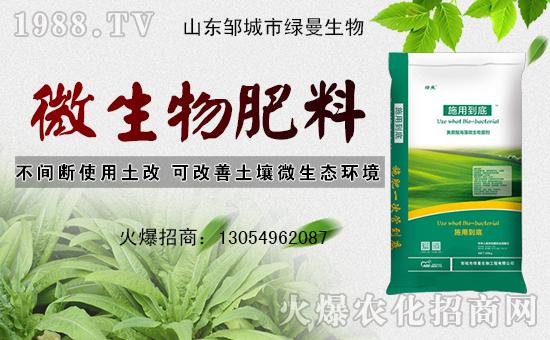菌达六九元素+黄腐酸生物菌肥,大蒜底肥1+1配方!