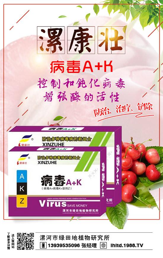 大棚番茄病毒病打什么药好?危害症状如何辨别!防治方法了解多少?